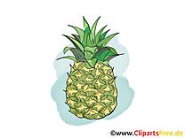 Ananas fruits image à télécharger gratuite