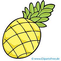 Ananas image gratuite - Fruits cliparts