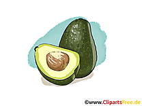 Avocado dessin à télécharger - Fruits images