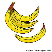 Bananes dessin - Fruits à télécharger