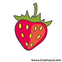 Fraise fruits illustration à télécharger gratuite