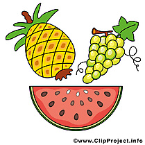 Fruits clip art gratuite à télécharger