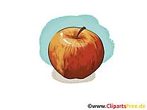 Pomme clip arts gratuits - Fruits illustrations