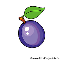 Prune image - Fruits images cliparts