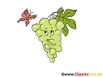 Raisin clip art gratuit – Fruits images