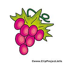 Raisin image - Fruits images cliparts