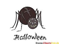 Araignée clip art gratuit – Halloween images