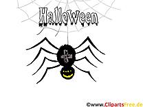 Araignée halloween image à télécharger gratuite