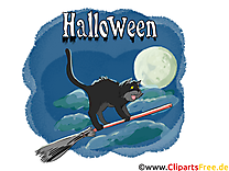 Chat balai dessin - Halloween à télécharger