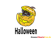 Citrouille chat dessins gratuits - Halloween clipart