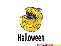 Citrouille chat dessins gratuits - Halloween clipart
