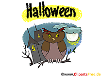 Hibou dessin - Halloween cliparts à télécharger