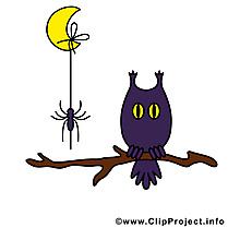 Lune hibou dessins gratuits - Halloween clipart