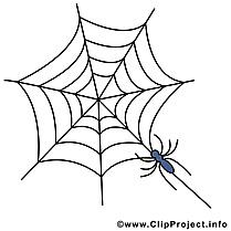Toile d'araignée image - Halloween clipart