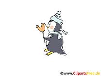 Pingouin clipart gratuit - Hiver images