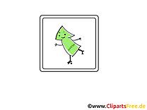 Arbre clip arts gratuits - Icône illustrations