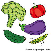 Image à télécharger légume clipart
