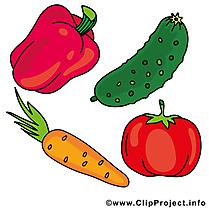 Légumes illustration gratuite images