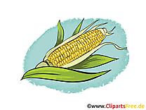 Maïs cliparts gratuis - Légume images