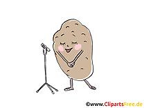 Pomme de terre images - Légume dessins gratuits