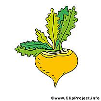 Rave dessins gratuits - Légume clipart