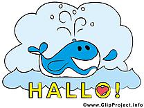 Baleine clipart - Salut dessins gratuits