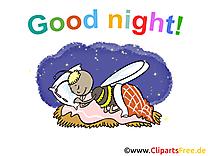 Abeille image gratuite - Bonne nuit illustration