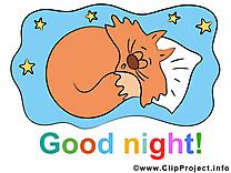 Chat dessin à télécharger - Bonne nuit images