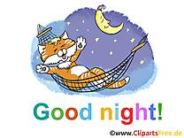 Chat image gratuite - Bonne nuit illustration