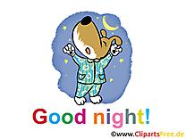 Chien dessin - Bonne nuit cliparts à télécharger