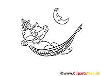 Clip arts à colorier chat - Bonne nuit illustrations