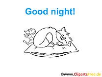 Coloriage chat - Bonne nuit à télécharger