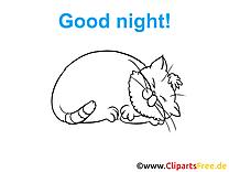 Dessin bonne nuit clip arts gratuits