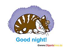 Dessin gratuit chat - Bonne nuit image