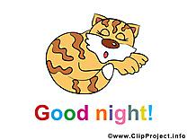 Images chat - Bonne nuit clip art gratuit