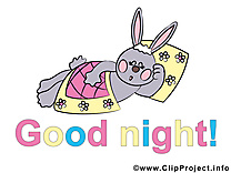 Lièvre dessin - Bonne nuit clip arts gratuits