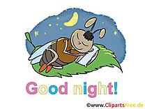 Mouche bonne nuit illustration à télécharger gratuite