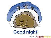 Ours clip arts gratuits - Bonne nuit illustrations