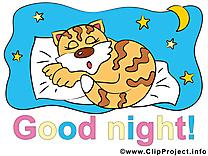 Tigre bonne nuit illustration à télécharger gratuite