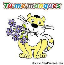 Chat fleurs illustration - Déclaration d'amour images gratuites