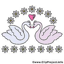 Cygnes dessin - Mariage cliparts à télécharger