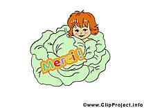 Chou images - Merci dessins gratuits