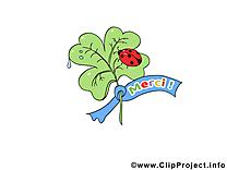 Coccinelle clipart gratuit - Merci images