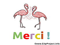 Flamants images - Merci clip art gratuit