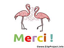 Flamants images - Merci clip art gratuit