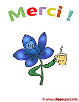 Fleur images - Merci dessins gratuits