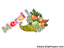 Fruits image gratuite - Merci illustration