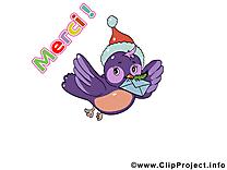 Oiseau images gratuites – Merci clipart