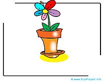 Fleur image gratuite images cliparts