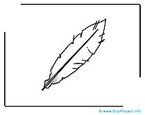 Plume image gratuite illustration